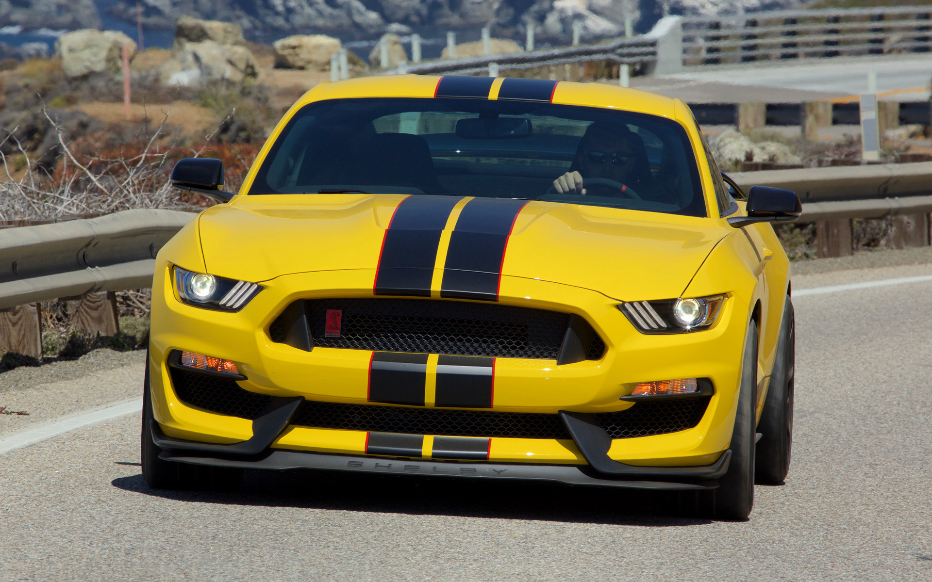 2016 Shelby GT350R Mustang - Wallpapers and HD Images ...