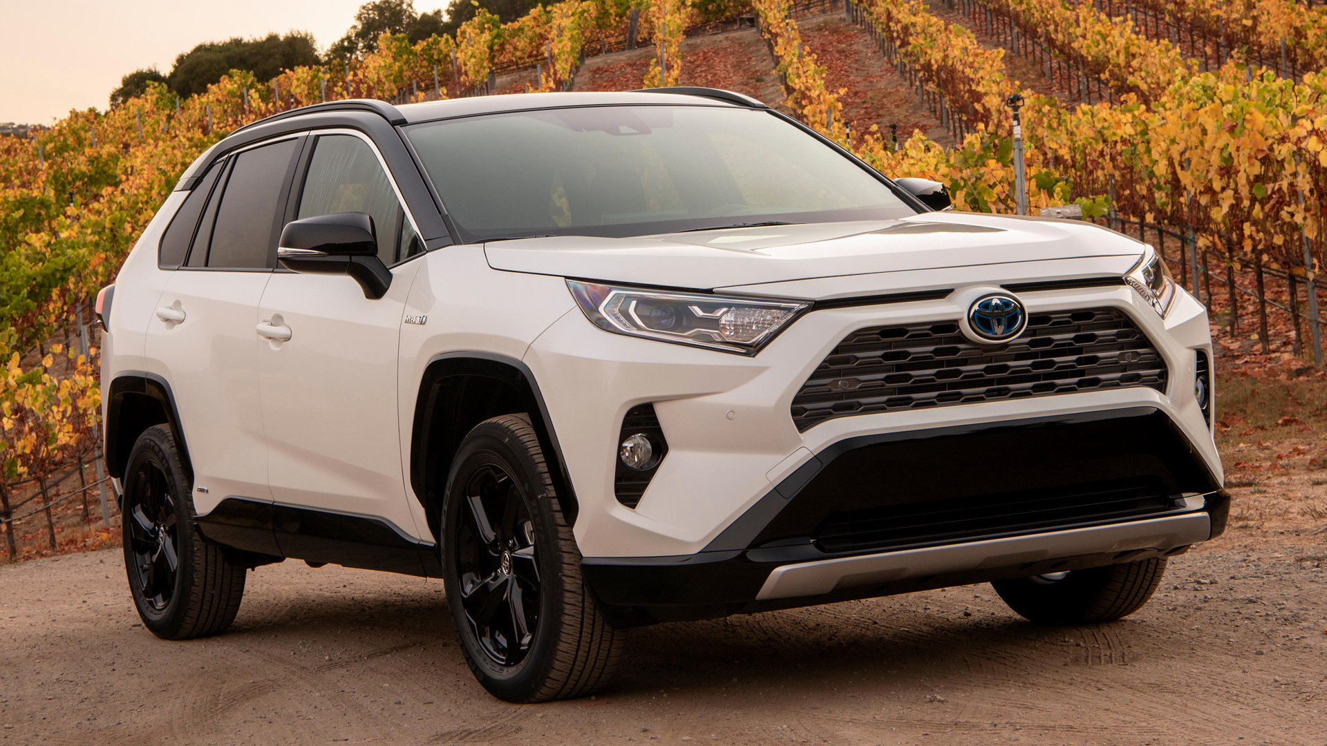 2019 Toyota Rav4 Hybrid Us Wallpapers And Hd Images
