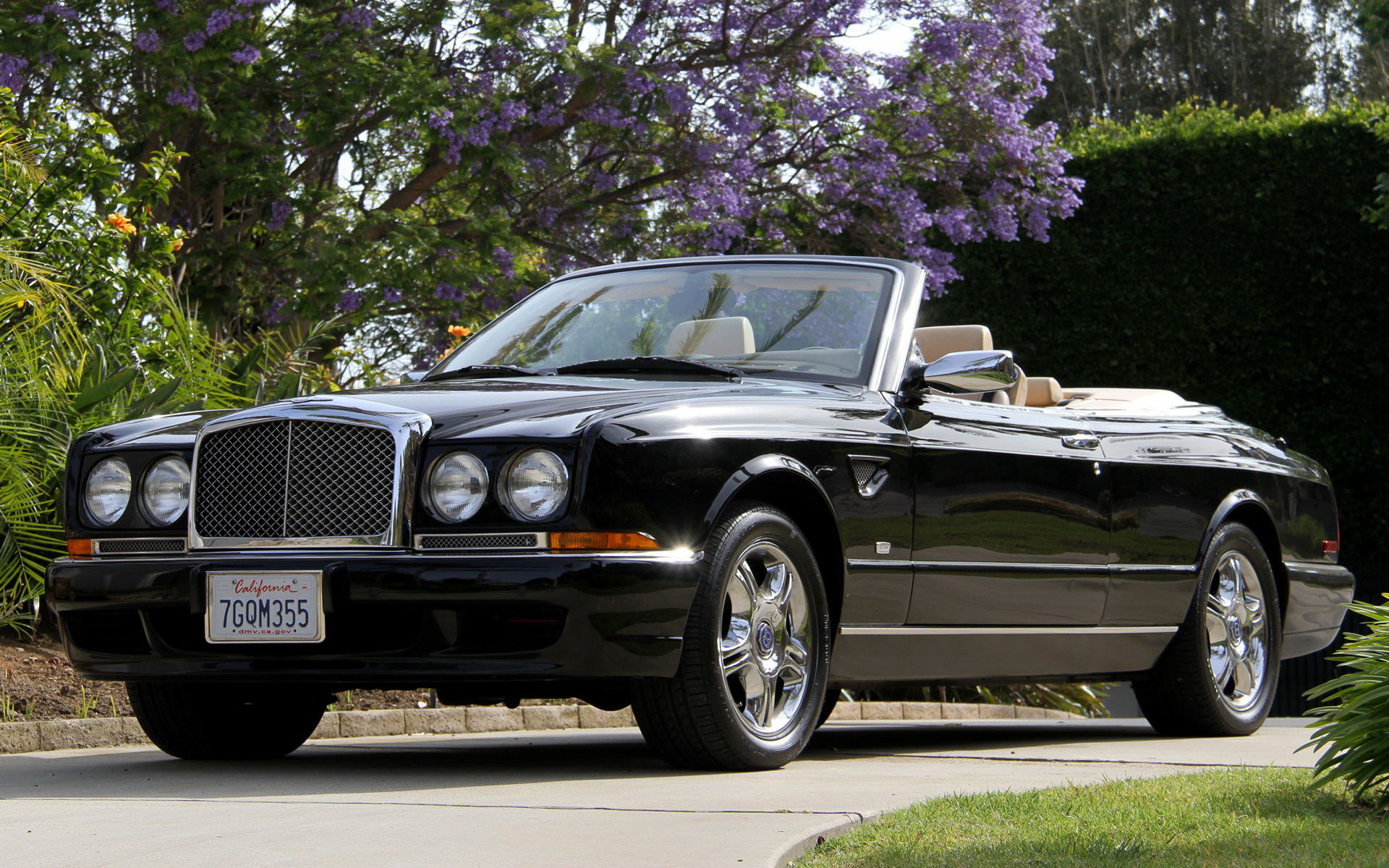 Wide 8 5 bentley azure