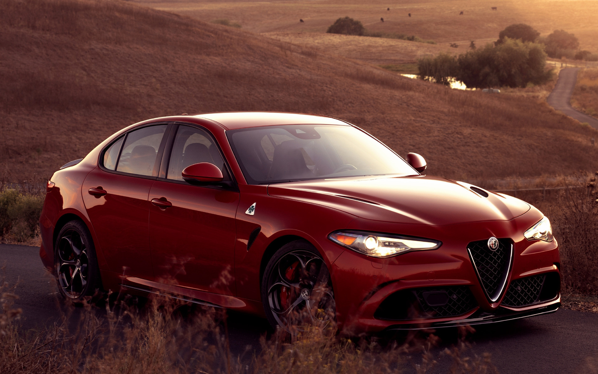 Mercedes Smart Car >> 2017 Alfa Romeo Giulia Quadrifoglio (US) - Wallpapers and ...