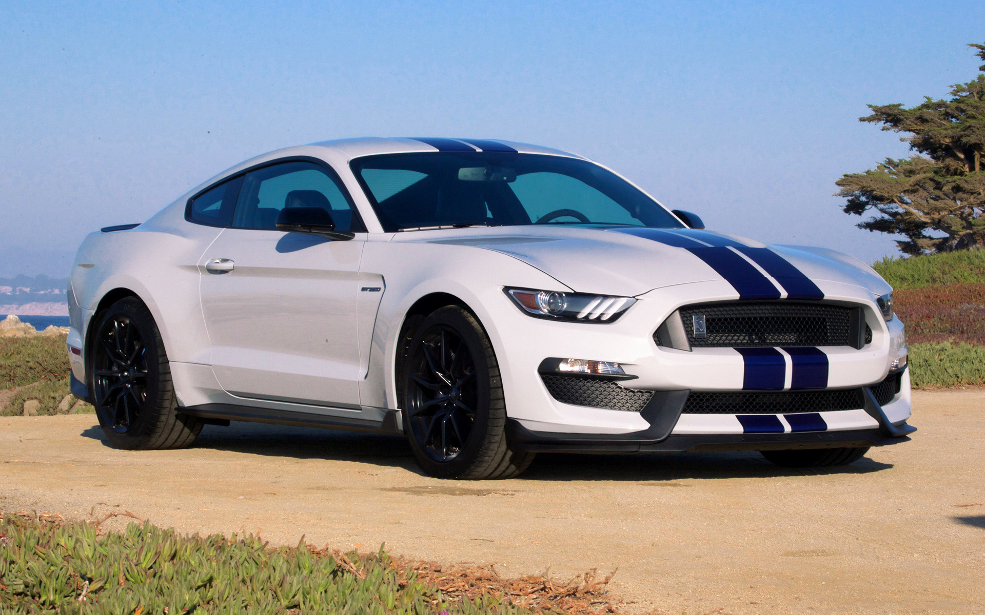 2016 Shelby Gt350 Mustang Wallpapers And Hd Images Car