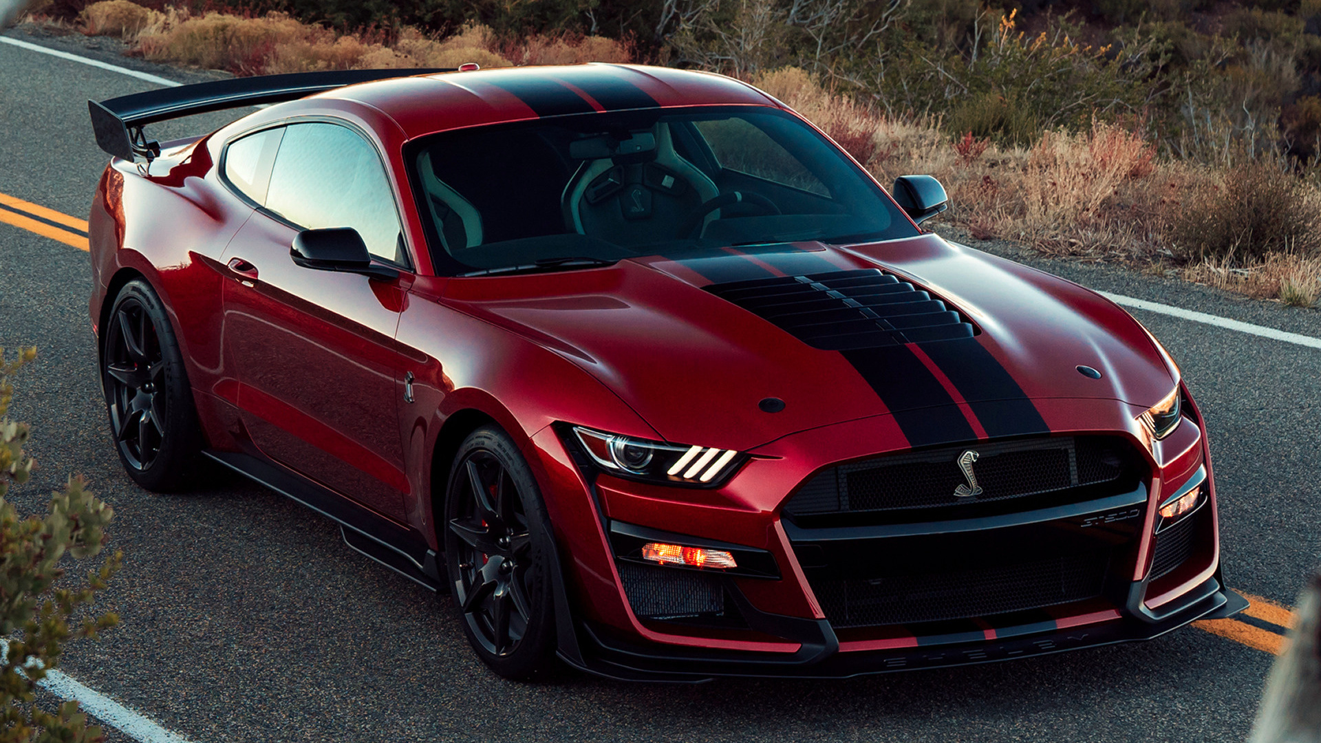 2020 Shelby GT500 Mustang - Wallpapers and HD Images | Car ...