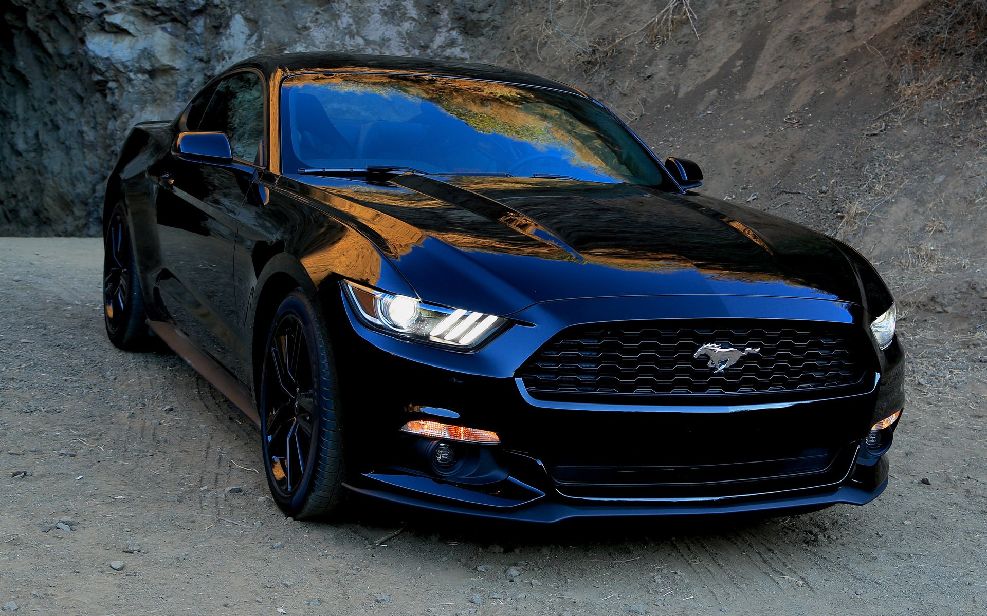 2015 Ford Mustang Wallpapers And Hd Images Car Pixel
