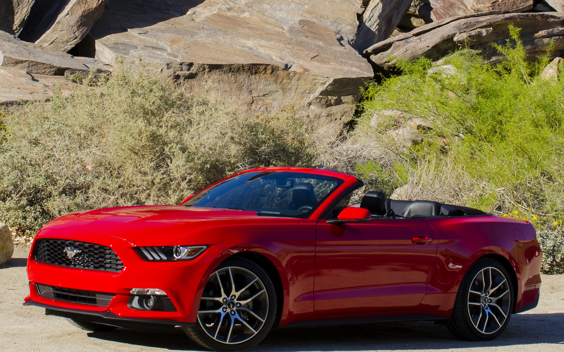Ford Mustang Ecoboost Convertible 2015 Wallpapers And Hd