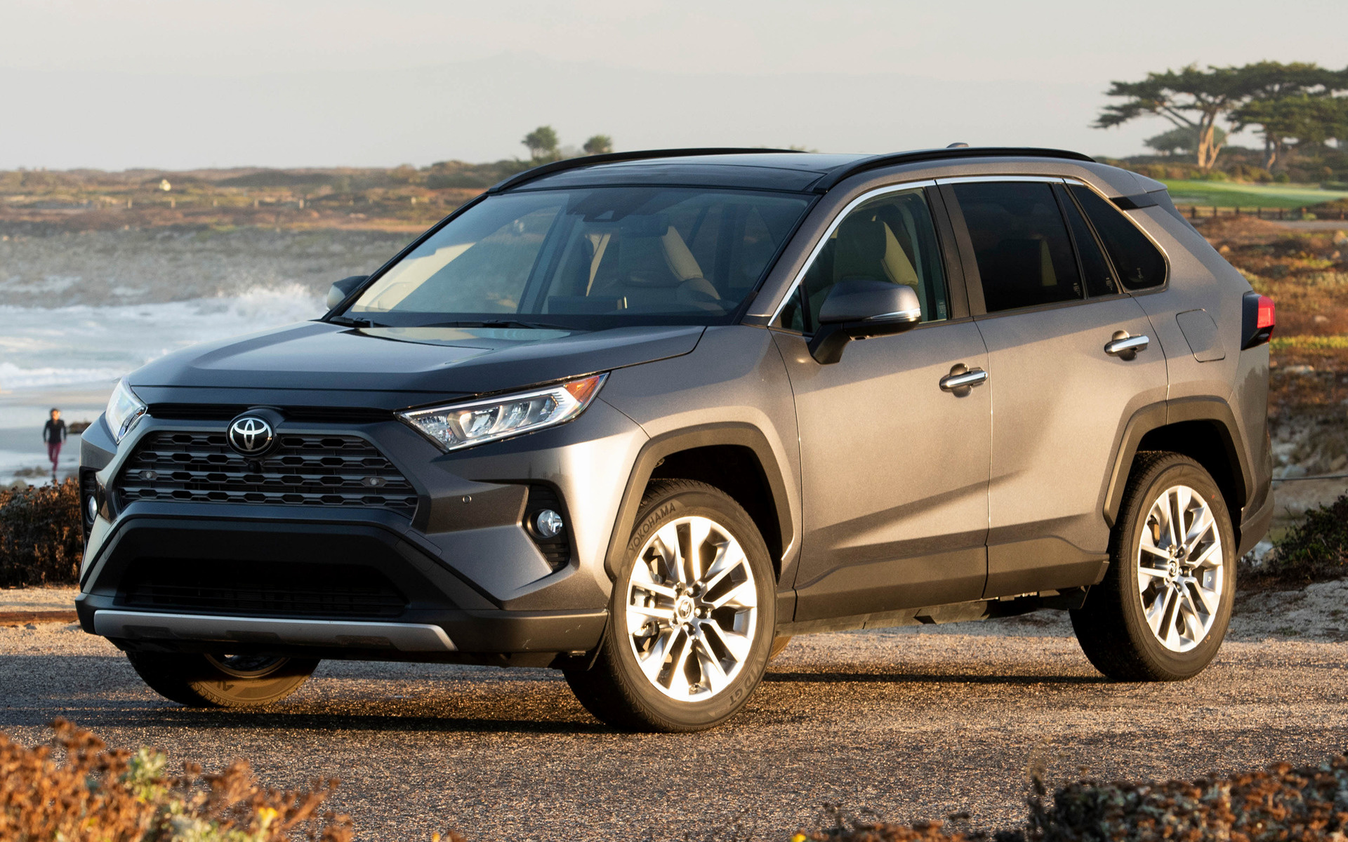 2019 Toyota RAV4 (US) - Wallpapers and HD Images | Car Pixel