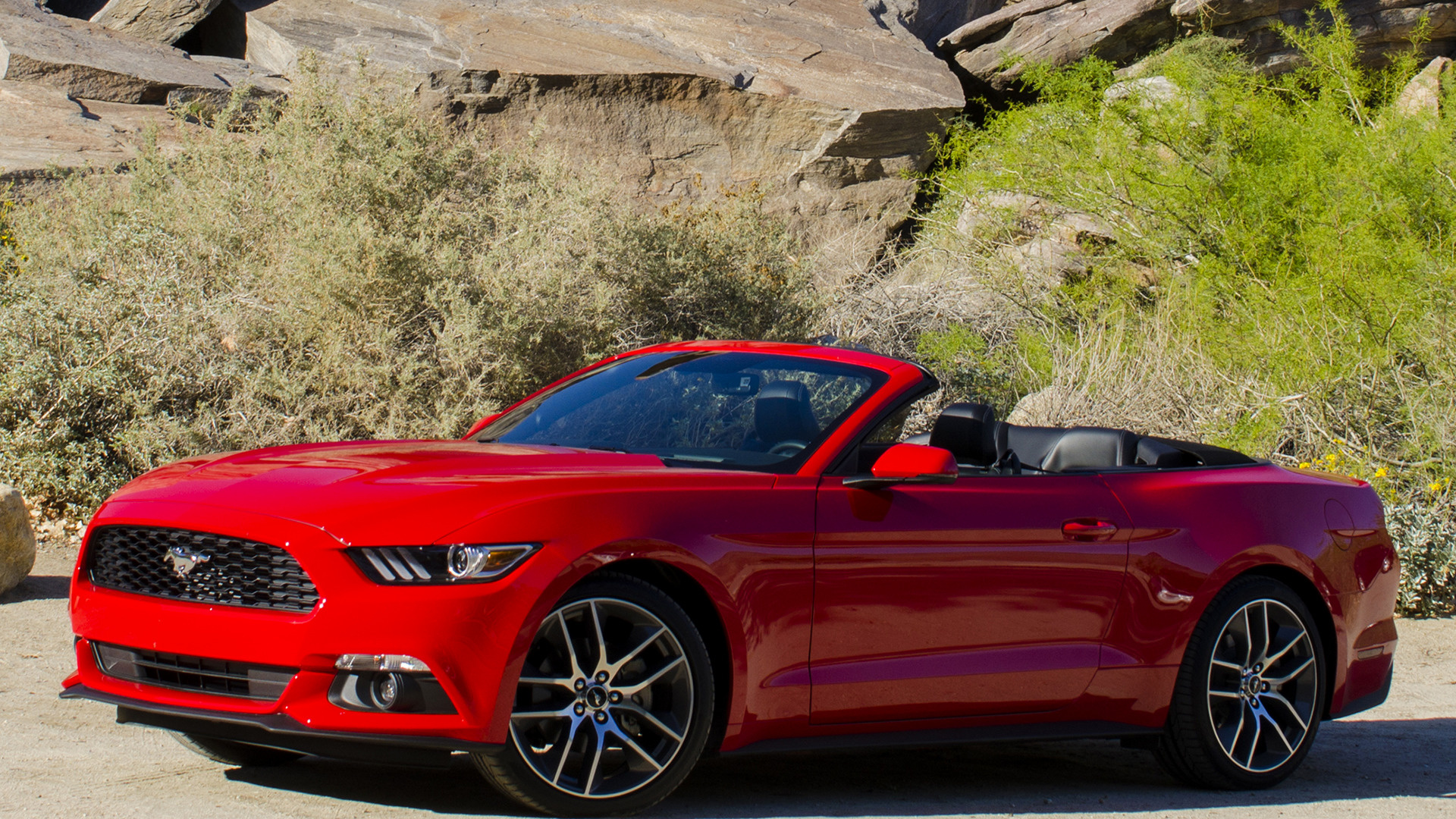 2016 Mustang Ecoboost >> 2015 Ford Mustang EcoBoost Convertible - Wallpapers and HD ...