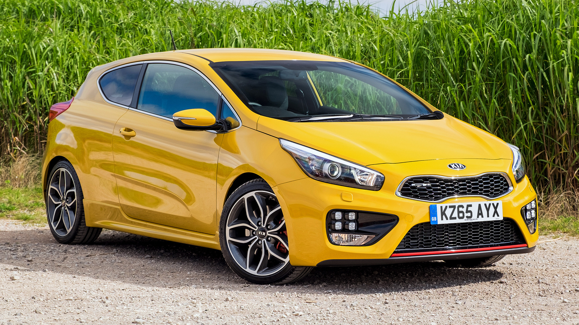 Kia Pro Cee D Gt 2015 Uk Wallpapers And Hd Images Car