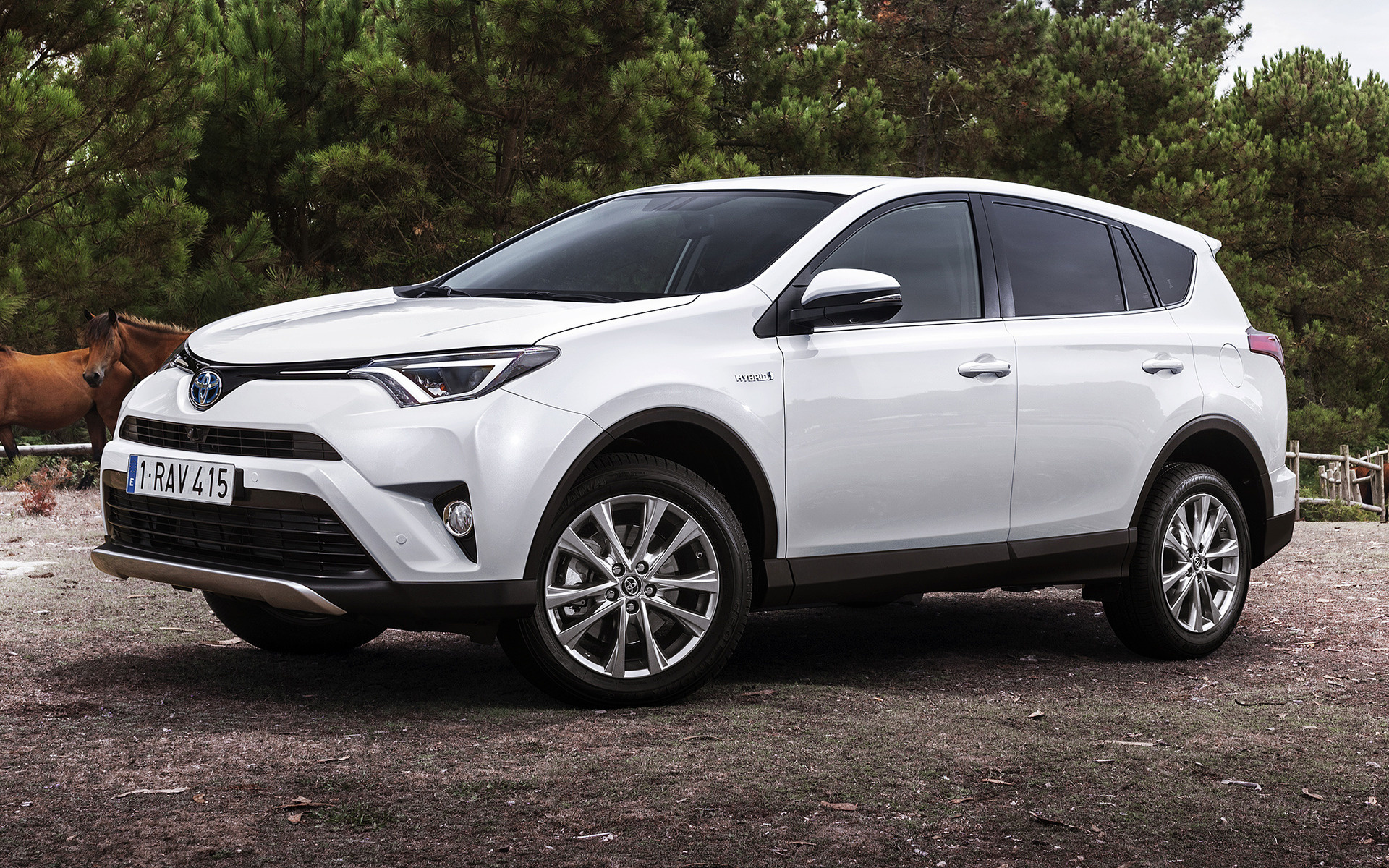 Toyota Rav4 Hybrid 2015 Wallpapers And Hd Images Car Pixel